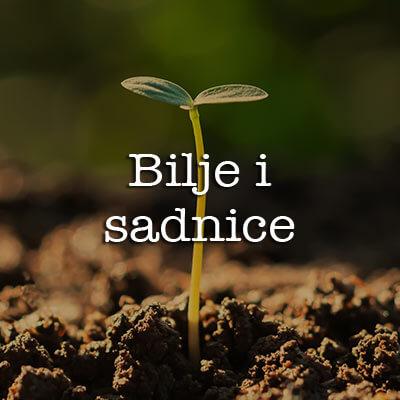 Zadranka Zadar Biljke Bilje sadnice cvijeće voće povrće Biograd Vir Par Lika